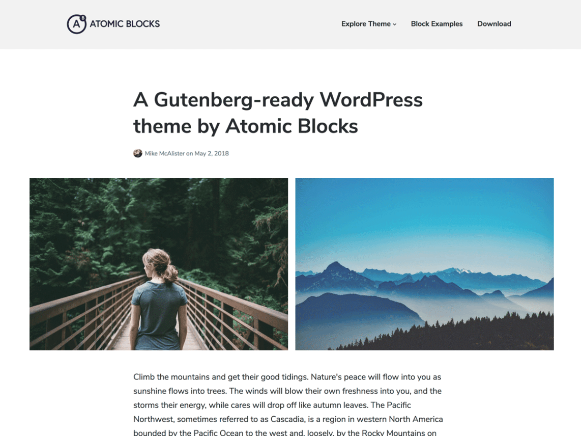 Atomic Blocks - Powerful WordPress theme for the new Gutenberg editor