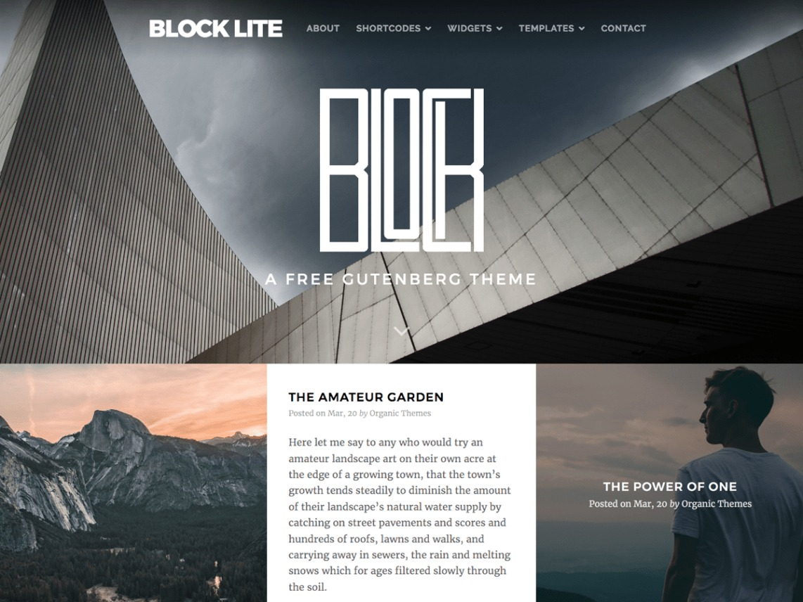 Block Lite A Basic Gutenberg Block WordPress Theme