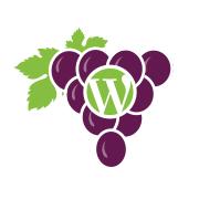 WordCamp-3